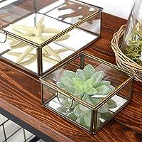 【アジア工房】 ガラスと真鍮でできた鏡付き収納ケース(Sサイズ)(63120) [並行輸入品]