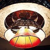 バリ アジアン照明 ランプ バリウッド:巻貝を水平カットしたようなエディースタイルのセミコンチランプ新登場! (電球3+豆球1使用..