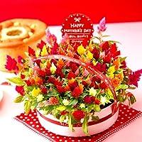 母の日ギフト 花とスイーツのセット 母の日ギフト 花鉢 生花(ケイトウ)とシフォンケーキ 人気グルメギフト
