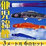 錦鯉〔こいのぼり〕山水画を思わせる色調☆健児錦鯉 瑞雲吹流 3メートル 6点セット