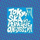東京スカパラダイス国技館&東京スカパラダイス体育館 LIVE DVD(初回限定版)