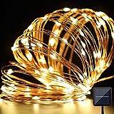 Lyhoon ソーラー充電式 イルミネーションライト 10メートル100LED 防水 夜間自動点灯 クリスマス電飾/室内飾り/室外装飾 (ウォームホワイト) [並行輸入品]