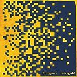 Marigold [輸入盤CD] (RT0082CD)