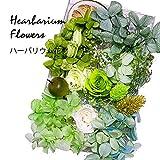 ハーバリウム 花材セット (グリーン)