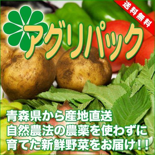 アグリパック(青森 アグリメイト南郷)自然農法 無農薬野菜詰め合わせパック 産地直送 ふるさと21
