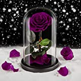 Eterfield Preserved Flower Rose Eternal Rose Forever Flower in Glass Dome Valentine's Day Mother's Day Anniversary Wedding Bi