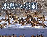 水鳥たちの楽園 (写真のえほん)