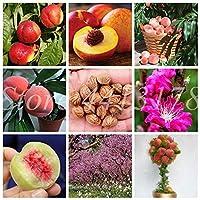10個/袋スウィートピーチ工場屋外の木盆栽はドワーフボナンザ桃は鉢植えJuicyfruit工場では、ホームガーデンの植物は簡単には成長のために:5個を