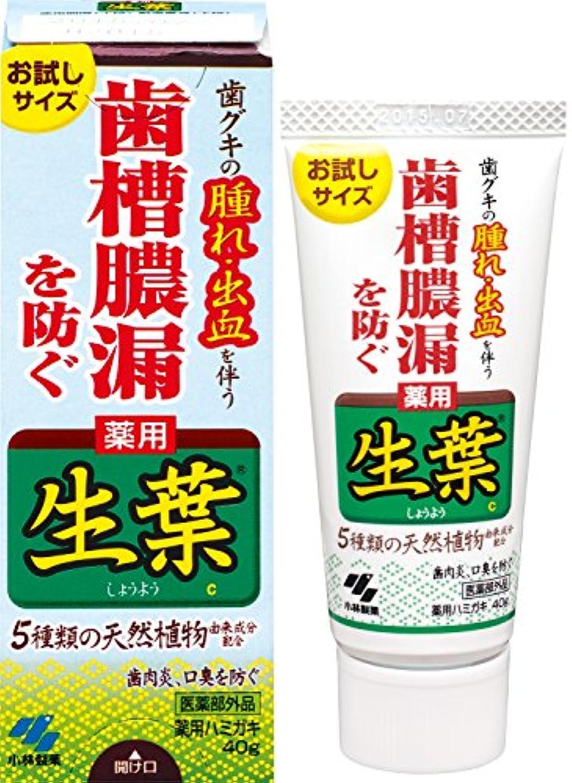 宿泊みすぼらしいヘア生葉(しょうよう)お試しサイズ 歯槽膿漏を防ぐ 薬用ハミガキ ハーブミント味 40g 【医薬部外品】