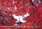 virtual trip 京都の紅葉〈低価格版〉 [DVD]