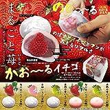 香る究極の苺大福(5種セット)