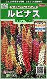 サカタのタネ 実咲花6885 ルピナス ラッセルミナレットミックス 00906885