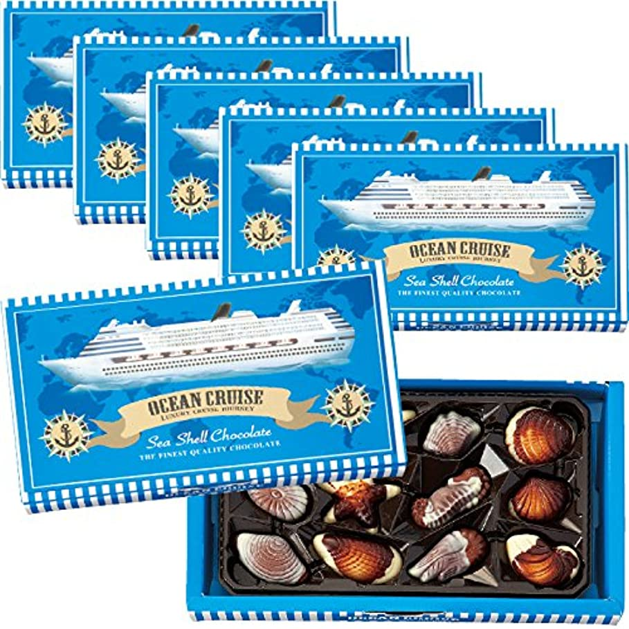 関与する本質的に赤ちゃんクルーズシーシェルチョコレート 6箱セット