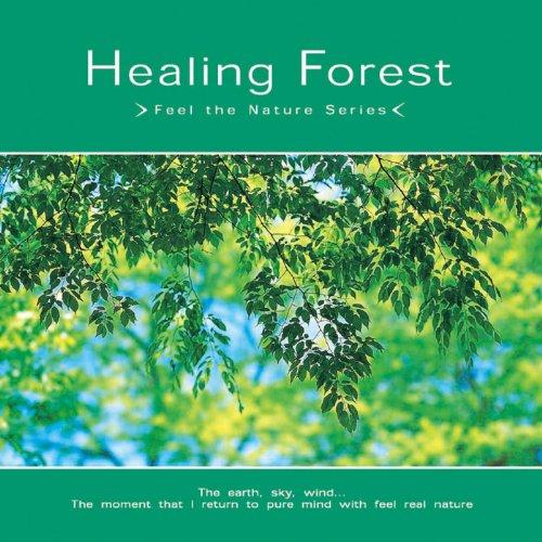 森林と風と木漏れ日