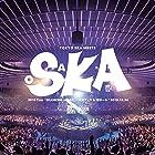 """[早期購入特典あり]2018 Tour「SKANKING JAPAN」""""スカフェス in 城ホール"""" 2018.12.24(CD2枚組)(ミニポスター付/B3サイズ)"""