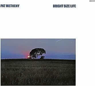 Bright Size Life