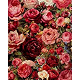 Frameless Beautiful Red Roses DIY Digital Oil Painting Paint by Numbers Kit