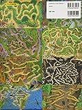 昆虫の迷路 秘密の穴をとおって虫の世界へ 画像