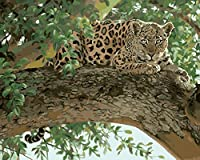 Wowdecor 数字油絵 数字キット40×50cm - ヒョウグリーンツリー - DIY ぬりえ 塗り絵 絵画 趣味 インテリア (フレームレス)