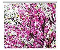AG DESIGNカーテン、3Dフォトプリント、光、100%PES、多色、280 x 245 cm / 110,2 x 96,5インチ