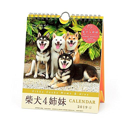 Shiba Inu 2019 Wall Calendar Yamakei Dog from JAPAN