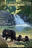 Abrams Falls–Great Smoky Mountains国立公園、TN 9 x 12 Art Print LANT-44574-9x12