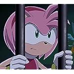 ソニック・ザ・ヘッジホッグ(Sonic the Hedgehog) QHD(1080×960) エミー・ローズ
