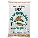 【種子】 シロカラシ 地力1kg カネコ種苗のタネ