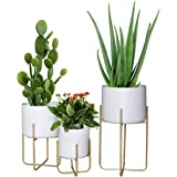 Floor Standing Planters with Metal Stand Pack of 3, White Plant Pot with Gold Metal Stand, Matches Mid Century Modern Living