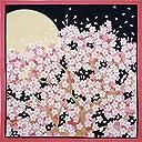 花景色 小風呂敷 桜