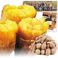 国華園 種子島産 安納芋 小芋 10kg1箱 さつまいも 安納芋