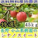 減農薬 長野 シナノスイート りんご A品 約4.5kg 8?25個入 リンゴ 林檎 産地直送 小山