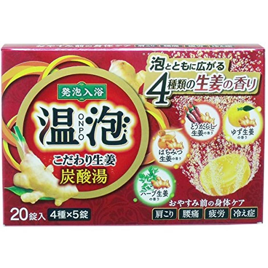 2個セット アース製薬 温泡 ONPO こだわり生姜 炭酸湯 20錠(5錠x4種)