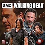 Amc the Walking Dead 2019 Calendar (Square)