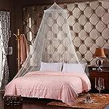 新しいドームエレガントレースサマーハウスベッドネッティングキャノピー円形蚊帳の販売 (白)