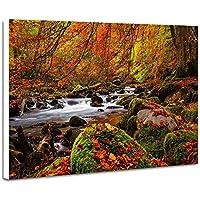 秋の景色、森林、木 - (N021) - 自然 風景 壁掛け式の装飾画 印刷の絵 ポスター(30cmx40cmx2.5cm)