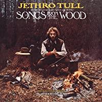 SONGS FROM THE WOOD [LP] [12 inch Analog]