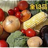 むつみ屋 旬の無農薬野菜セット 13品