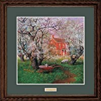 BeneathばねBlossoms Framed Limited Edition印刷by Ned Young