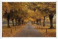 #21744道路秋の木の下でのティンサイン 金属看板 ポスター / Tin Sign Metal Poster of #21744 Road Under The Autumn Trees