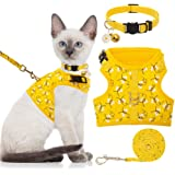 BINGPET Cat Harness with Leash and Collar for Walking - Escape Proof with 59 Inches Leash - Adjustable Soft Vest Harnesses fo