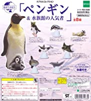 地球生命紀行 ペンギン&水族館の人気者 カプセルコレクション ガチャ エポック(全8種フルコンプセット)