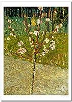 世界の名画 ゴッホ 花咲くアーモンドの木 ジークレー技法 高級ポスター (A1/594ミリ×841ミリ)