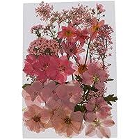 sharprepublic 押し花 ドライフラワー 花材 セット しおり 3Dネイル パーツ レジン デコレーション 全…