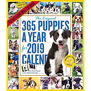 The Original 365 Puppies a Year 2019 Calendar: Picture-a-day