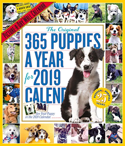 The Original 365 Puppies a Yea...