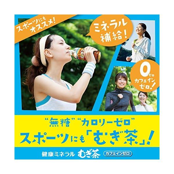 伊藤園 健康ミネラルむぎ茶の紹介画像6