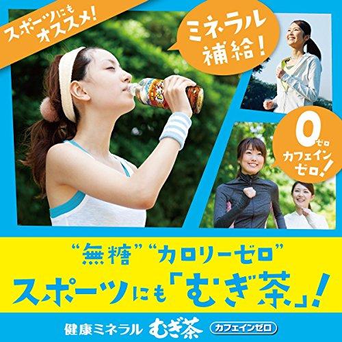 健康ミネラル麦茶 ペット 350ml×24本
