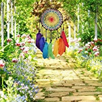 RaiFu ドリームキャッチャー カラフル 手作り かぎ針編み 羽 ペンダント 風の鐘 贈り物 ウェディング 家 装飾 装飾品 おしゃれ
