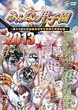 みんなの甲子園2013 ~第85回記念選抜高等学校野球大会全記録~ [DVD]の画像